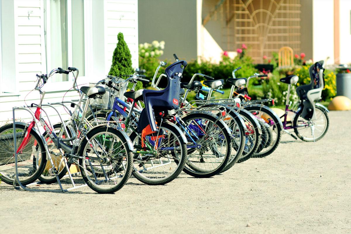 Прокат велосипедов. База отдыха Розовая дача
