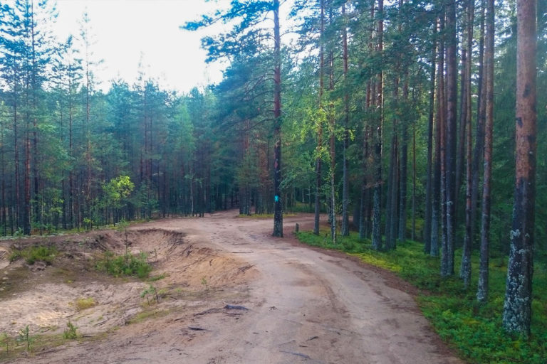 Прогулка к роднику 1,2 км. База отдыха Розовая дача