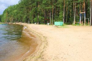 Пляж озеро Отрадное. База отдыха Розовая дача