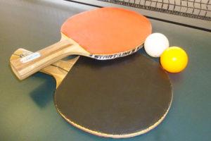 Набор для игры в настольный теннис. База отдыха Розовая дача