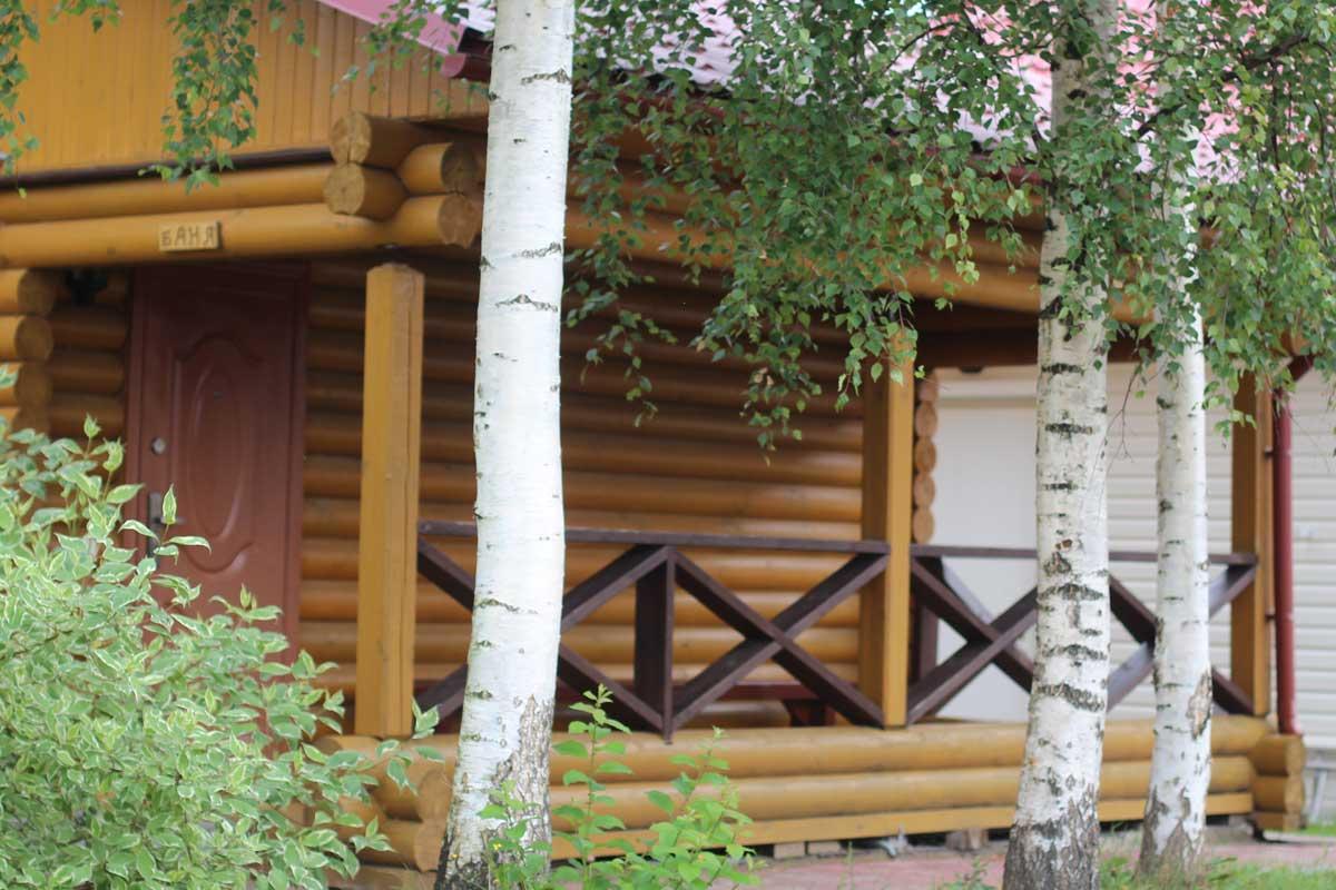 Русская баня вид с аллеи. База отдыха Розовая дача